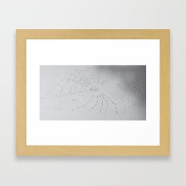 Spider Web after the storm Framed Art Print