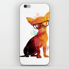 Hipster chihuahua iPhone & iPod Skin