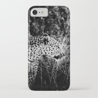 leopard iPhone & iPod Cases featuring Leopard by BethWold