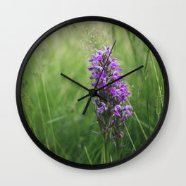 Flower. Southern Marsh Orchid (Dactylorhiza praetermissa) growing wild. Wall Clock