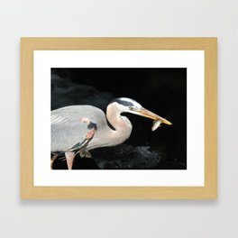 Gone Fishin' 2 Framed Art Print