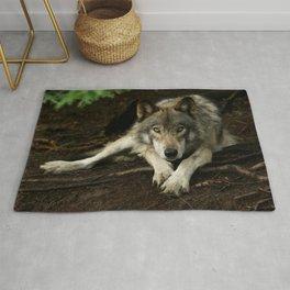 Intense Timber Wolf Rug