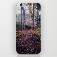 color of fall iPhone & iPod Skin
