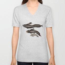 Short-finned pilot whale (Globicephala macrorhynchus) Unisex V-Neck