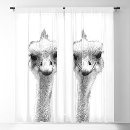 Black and White Ostrich Illustration Blackout Curtain