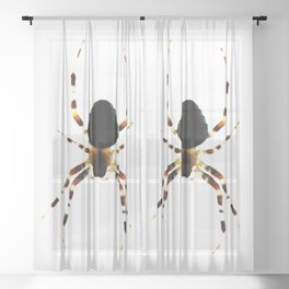 Spider Sheer Curtain