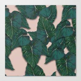 leaves monstera Canvas Print