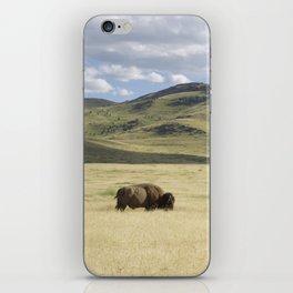 Alone Time - Bison on Range iPhone Skin