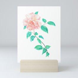 Climbing Rose Mini Art Print