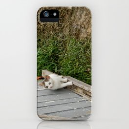 The courious cat iPhone Case