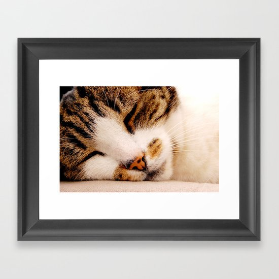 Sleepy Cat Framed Art Print