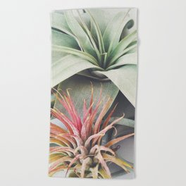 Air Plant Collection III Beach Towel