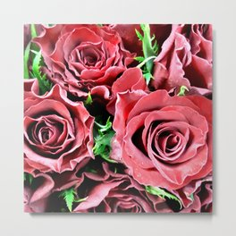 Red Rose 4 Metal Print