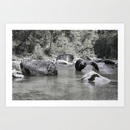 Riverside NO1 Art Print