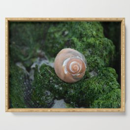 Shell on Moss Serving Tray