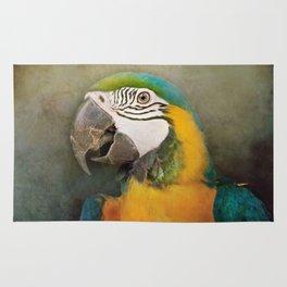 Portrait of a Parrot Rug