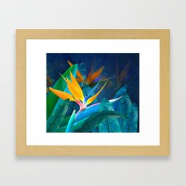Bird of Paradise Under a Hawaiian Moon Framed Art Print