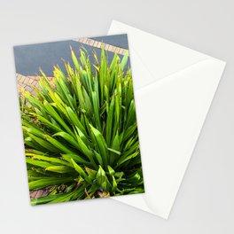 Garden Plants Below Stationery Cards