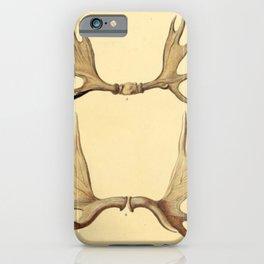 Antique Antlers iPhone Case