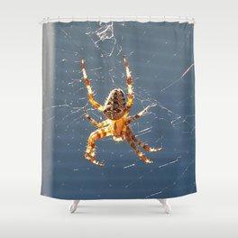 Spider Shower Curtain