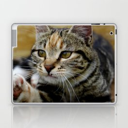 Gor Fur It Laptop & iPad Skin