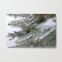 Softly, One Winter Day Metal Print