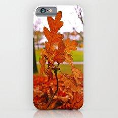 Fallen leaves iPhone 6s Slim Case