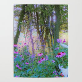 Bright Sunrise with Pink Coneflowers in My Rubio Garden Poster