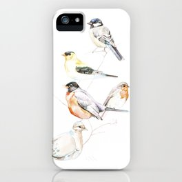 Birds of the Midwest iPhone Case