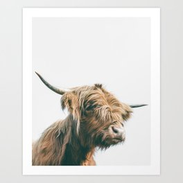 Majestic Highland cow portrait Art Print
