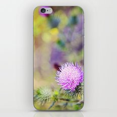 Wild Thistle iPhone & iPod Skin