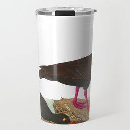 White-legged Oyster-catcher, or Slender-billed Oyster-catcher Bird Travel Mug