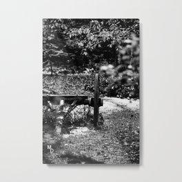 Old garden Metal Print