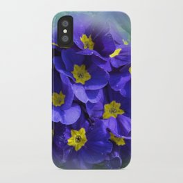 the beauty of a summerday -70- iPhone Case