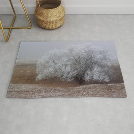 Frost and Fog Rug