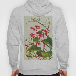 Joseph Buc'hoz -1776 Precious collection and illumination of t beautiful and curious flowers Hoody
