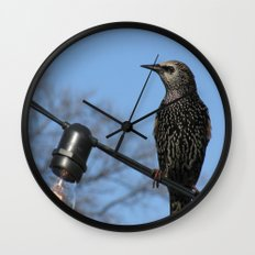 USA - NASHVILLE - Bird on String of Lights Wall Clock