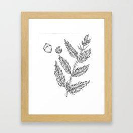 Nettles and Nutshells Framed Art Print