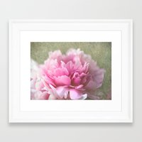 peony Framed Art Prints featuring Peony by LoRo  Art & Pictures