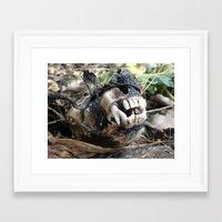 animal skull Framed Art Prints featuring Animal Skull by CJ Thornburg