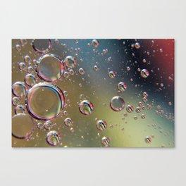 MOW5 Canvas Print
