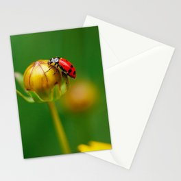 Back on Top Stationery Cards