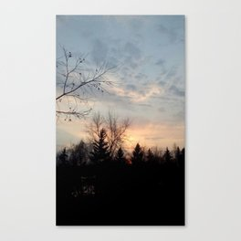Peach sunset over the trees Canvas Print