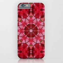 Red autumn leaves kaleidoscope - Cranberrybush Viburnum iPhone Case