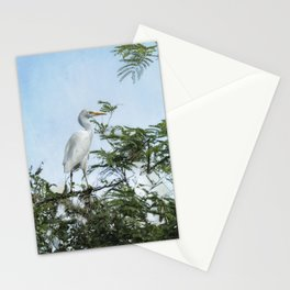 Cattle Egret In a Tree Stationery Cards