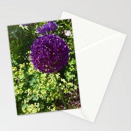PomPom Stationery Cards