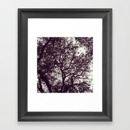 stiffs Framed Art Print