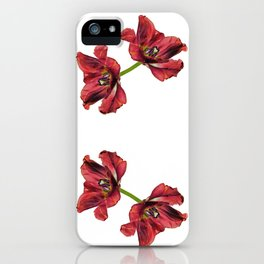 Burning tulip iPhone Case