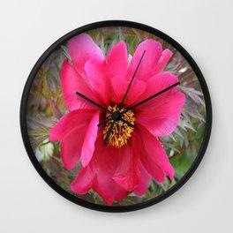 Pretty in Pink Wall Clock