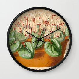Cyclamen Atkinsil Vintage Botanical Floral Flower Plant Scientific Illustration Wall Clock